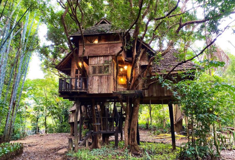Best treehouse villas in Chiang Mai
