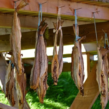 Weird foods of Iceland — dried fish